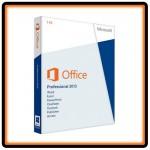 office2013P1L